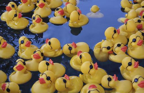 Midway Duckies, Dude