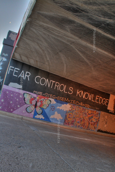 Fear Controls Knowledge