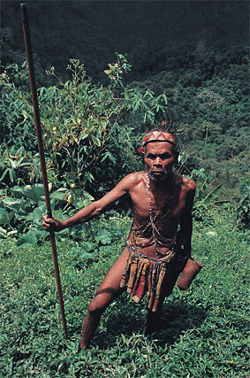 Orang asli, or native resident, at Cameron Highlands