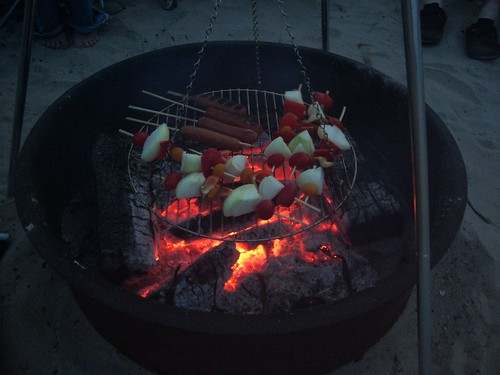 illustration of whole new world of campfire cooking