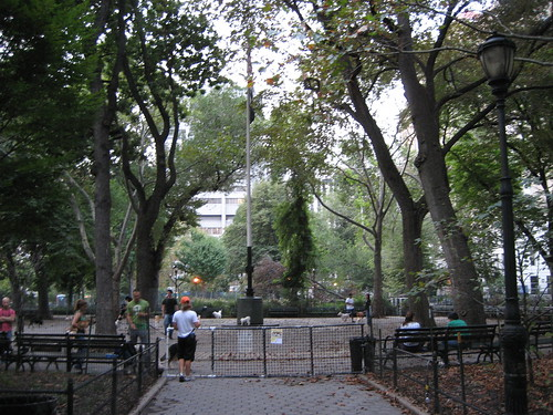Ugly dog run at Stuyvensant Park