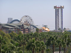 Disneyland in August (1)