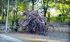 dsc01956-bikeart