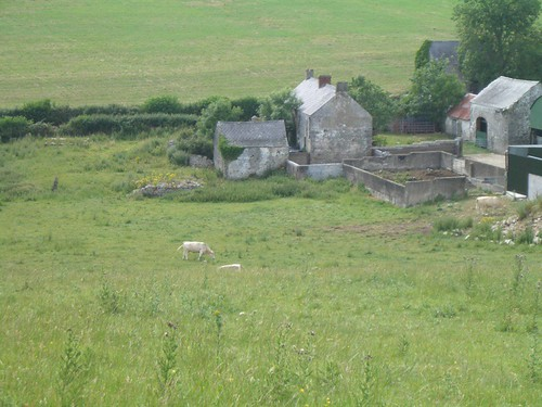 A Local Farm, as Seen from the Top of Navan Fort