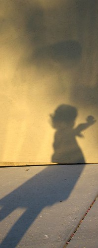 little.shadow