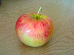 An apple from our new trees