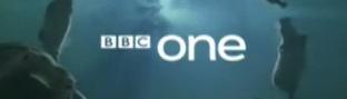 bbchippos
