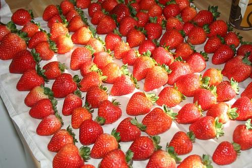 Strawberries Ready for the Dark Stuff