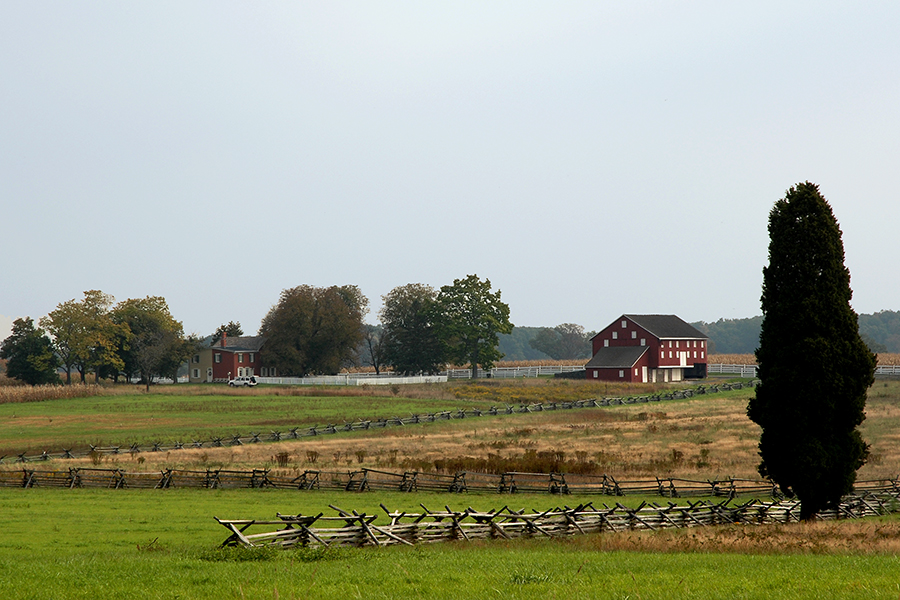 Bushman Farm