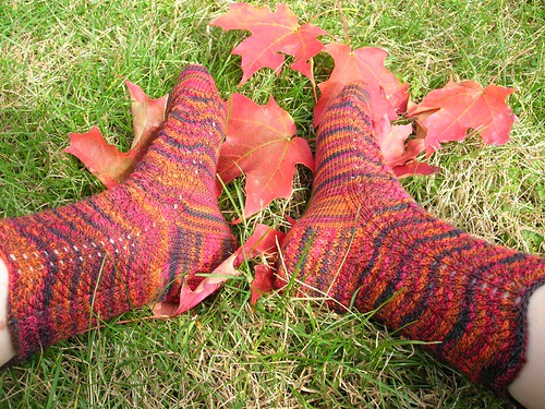 Cherry Tree Hill Feather and Fan socks