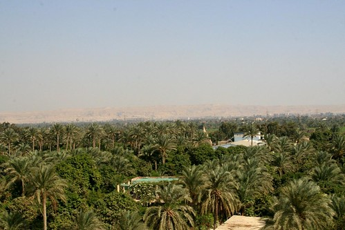 Near the Nile