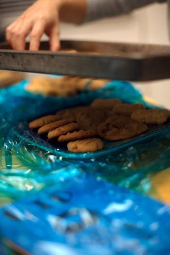 Yaaay Cookies