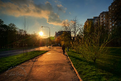 Spring afternoon photo by Robix Walicki