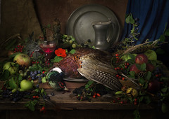 Hedgerow Fruits with Pheasant photo by GARY HICKIN (GAZART)
