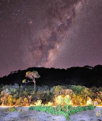 Milky Way alongside the Coast Road photo by Nadly Aizat