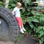Sliding down the tyre<br/>16 Aug 2012