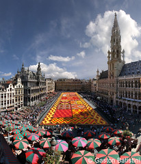 From the most exclusive and secret place. Carpet flower 2012, Great Market, Brussels, Belgium photo by Gaston Batistini