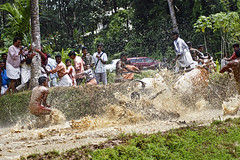 Bull Racing in Kerala - Photo 4 - How to Jump the barricades photo by Anoop Negi
