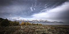 Grand Teton National Park photo by iPlaid34 (sooooo busy - catching up soon!)