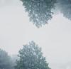 8001408708_b5440d5b1b_t