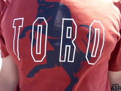 TORO photo by OrkoLuca