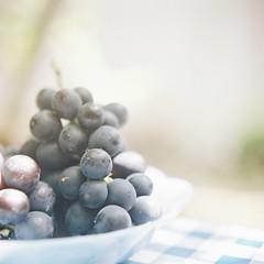*grape photo by fangchun15