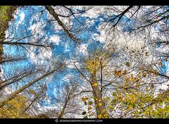 Arundel Autumn Sky [Explored #10] photo by Edwinjones