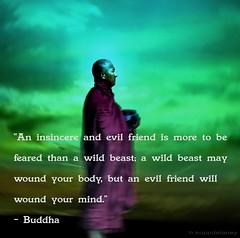 Buddha Quote 51 photo by h.koppdelaney