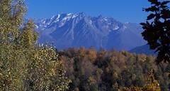 autunno photo by walter mingardi
