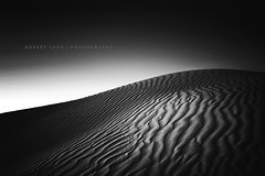 Sand dunes, black and white - Australia photo by Robert Lang Photography