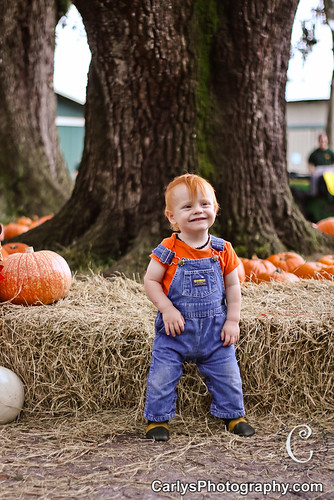 PUMPKIN PATCH - OCT 2012-8.jpg
