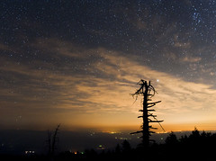 Night on Mary's Peak photo by benalesh1985
