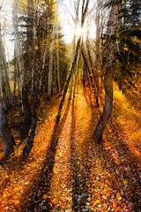 Fall Hiking photo by Scott Barlow