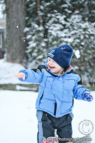 Kyton playing in the snow-5.jpg