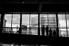 People , Shibuya , Tokyo , Japan photo by SungsooLee.com