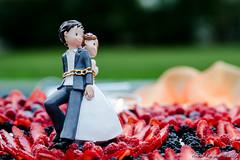 Wedding Cake [329_365 One Day One Photo] photo by andriyR4