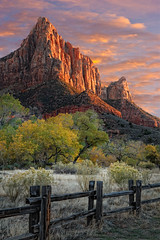 Zion National Park photo by Utah Images - Douglas Pulsipher