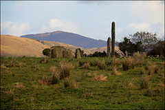 Stone circle and standing stones, Kealkil photo by catb -
