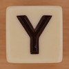 ZIP-IT! Dice Letter Y
