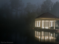 Foggy Night photo by Reed Lewis ATL
