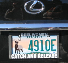 catch and release car plate
