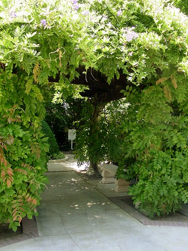 Ferarri Carrano Wisteria Entrance