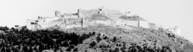 The castle of Argos from the city