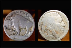 USA Buffalo Coin