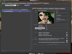 Second Life Search Tool