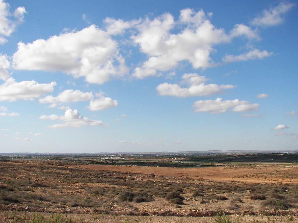 Aux environs de Kelibia/Haouaria