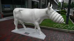 Cow #64