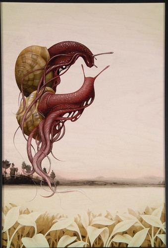 snails2.jpg
