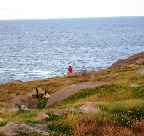 Cape Spear Visitor