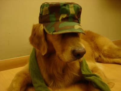 Army 2